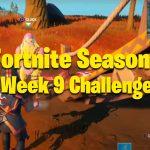 Desafíos de la semana 9 de la temporada 6 de Fortnite